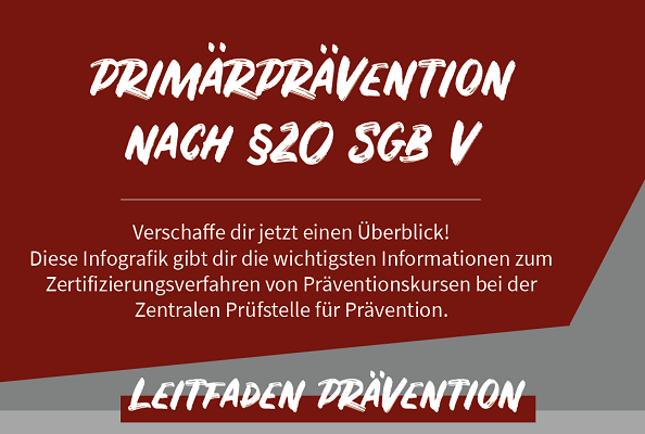 Infografik Primärprävention